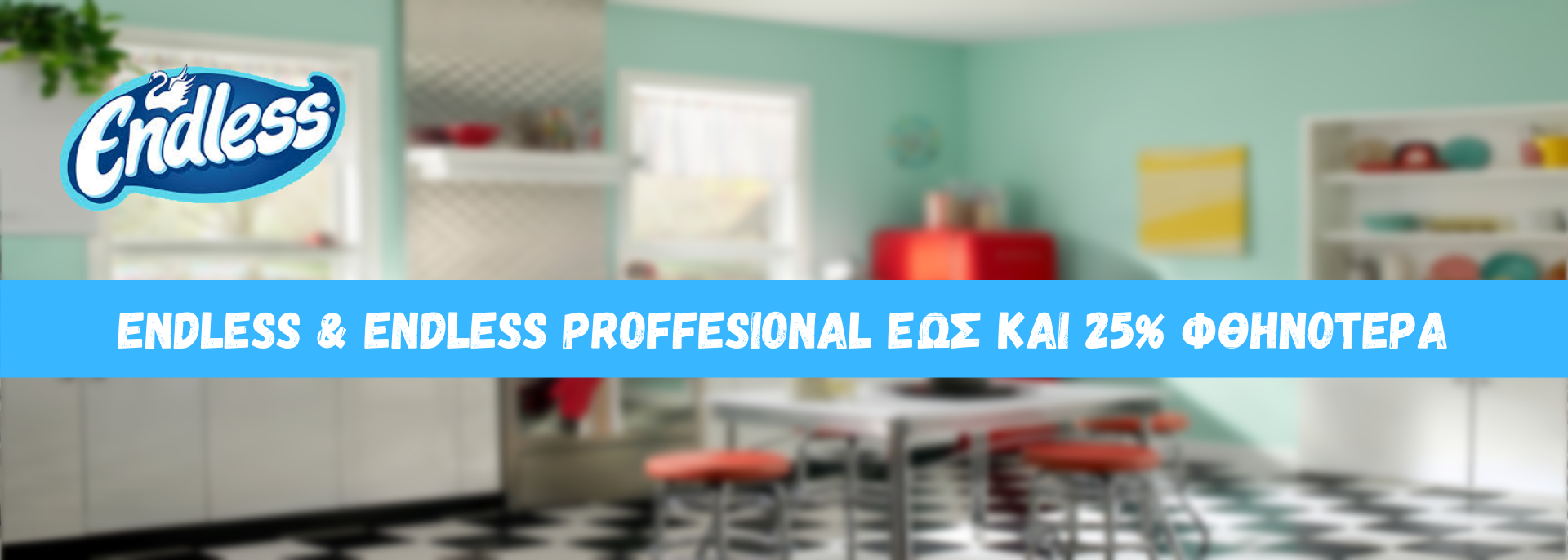 ENDLESS HOUSEHOLD & PROFESSIONAL PRODUCTS